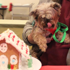 Gingerbread Dog House Making Party