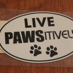 PAWSitivity magnet