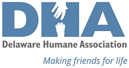 DHA Logo_final w accent colors