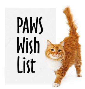 paws-wish-list-cat
