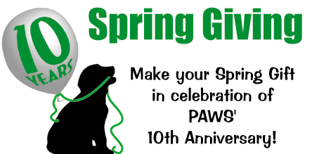 spring-giving-slide-show