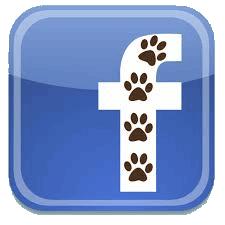 facebook-paws