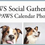 social-gathering-slide