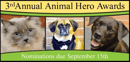 animal-hero-awards-header