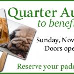 quarter-auction-slideshow