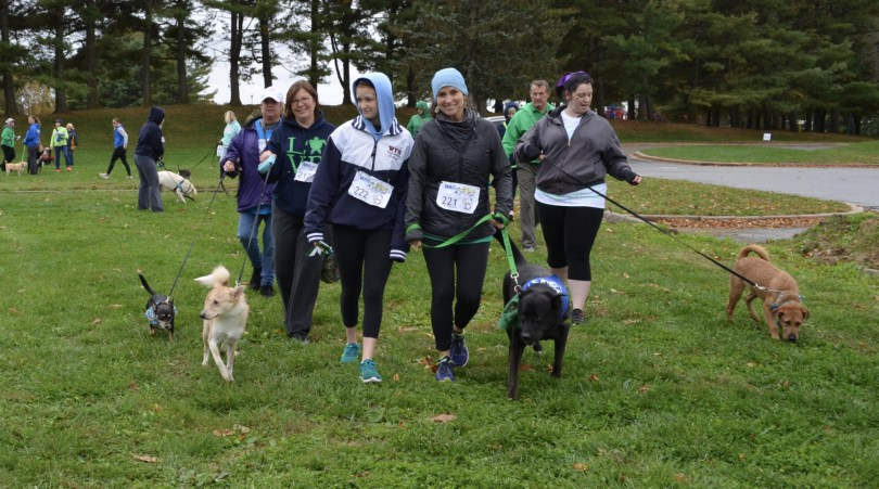 Soggy Saturday Doesn't Deter Dog Lovers