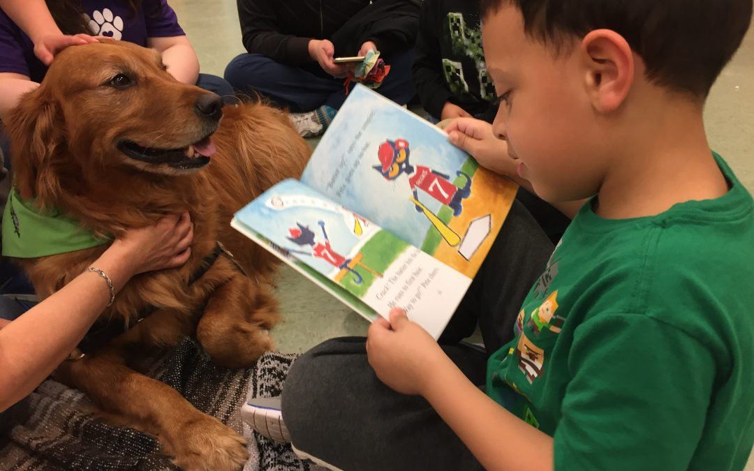 PAWS for Reading | PAWS for People