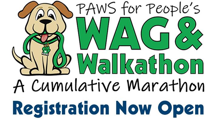 PAWS for People's Wag & Walkathon, A cumulative marathon artwork